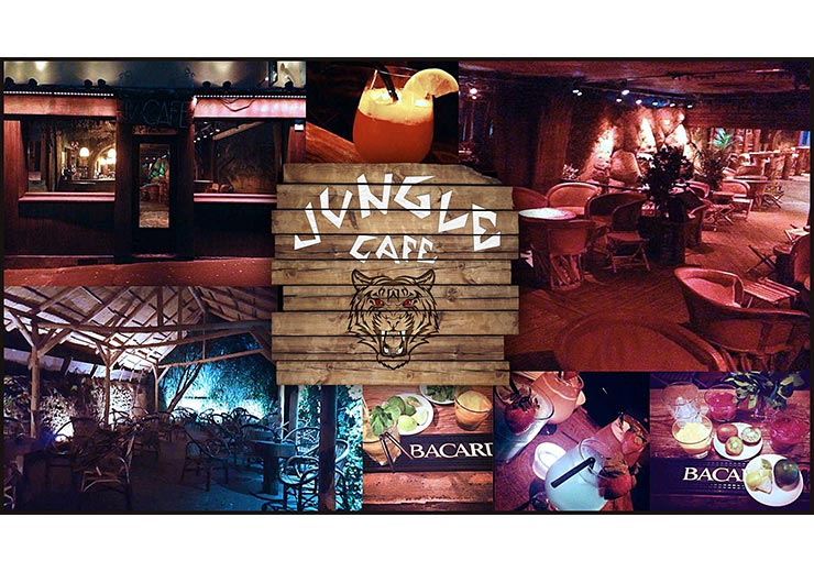 bar-le-jungle-café-chartres