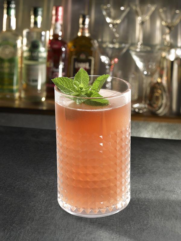 cocktail-virgin-watermelon-mojito