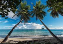 image_polynesie_mega_menu_tendance_conseil_technique