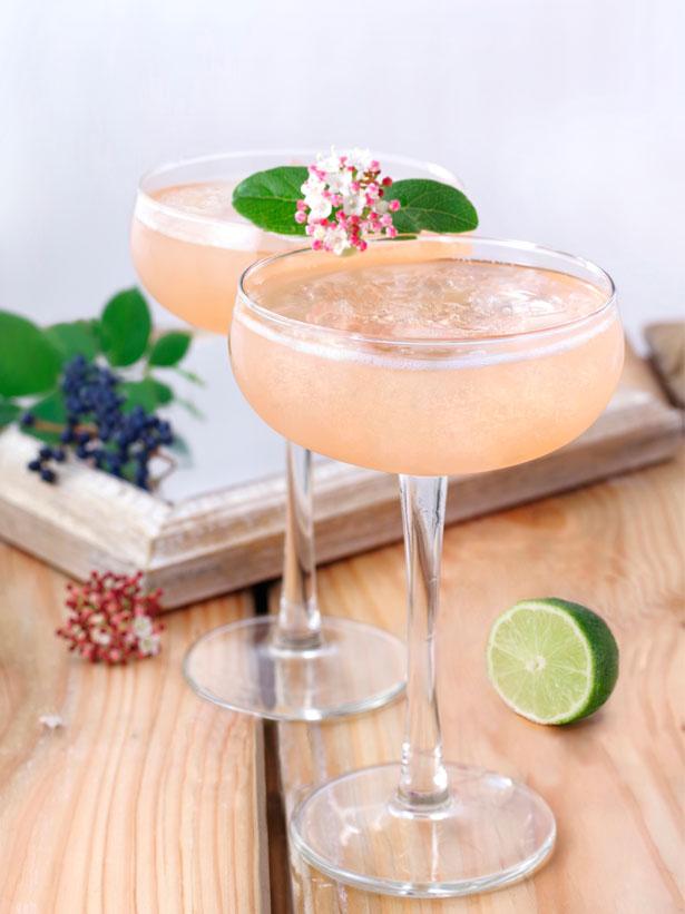 cocktail-peach'n-freeze