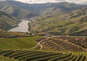 vallée-du-douro-destination-portugal