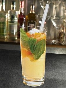 cocktail-real-one-cocktail-et-summer-body
