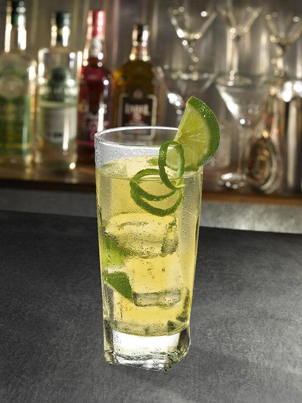 Cocktail tonic amer dans un verre avec des glaçons, zeste et tranche de citron vert