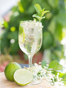 cocktail-hugo
