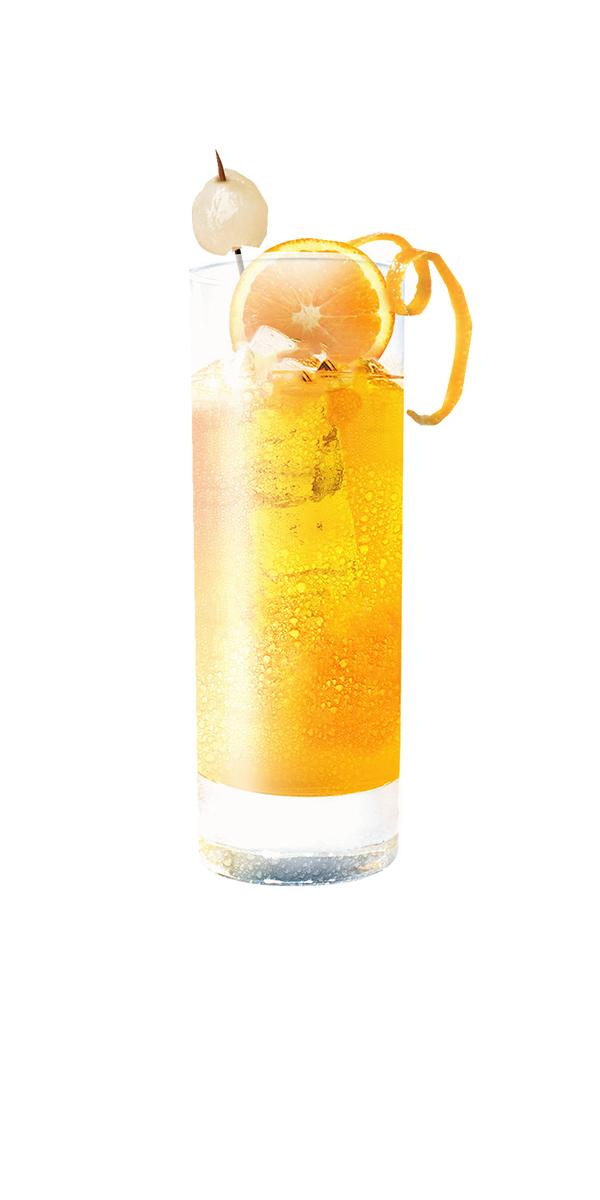 ginger-flower-cocktail-gin-orange-gingembre